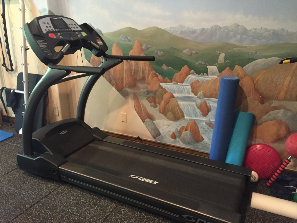 CYBEX EQUIPMENT FOR SALE