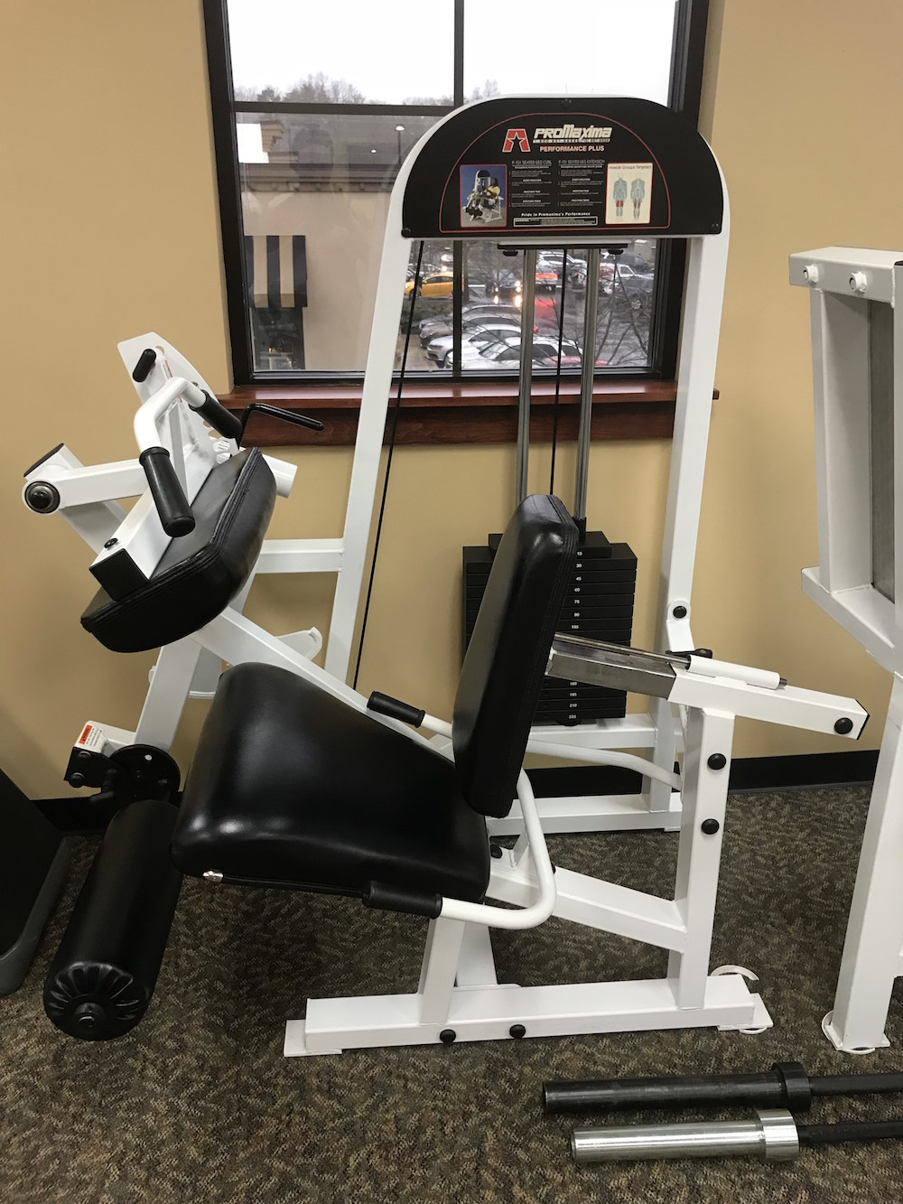 PROMAXIMA P-151 SEATED LEG CURL / EXTENSION
