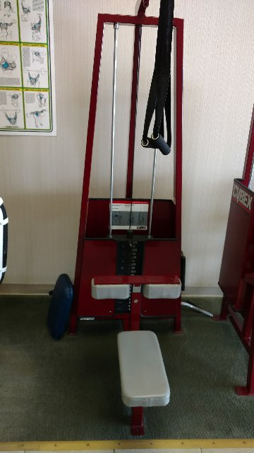 CYBEX LAT PULLDOWN MACHINE