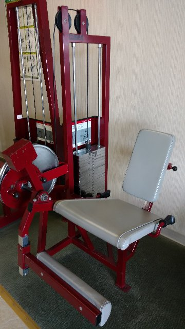CYBEX SEATED KNEE EXTENSION
